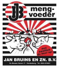 Jan Bruins