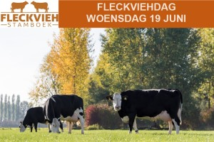 fleckviehdag 19 juni